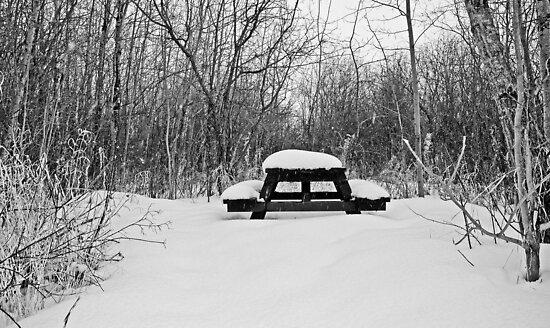 Winter Picnic by Keri Harrish