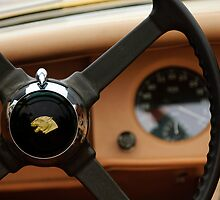 1954 Jaguar XK 120 M Roadster Steering Wheel by Jill Reger
