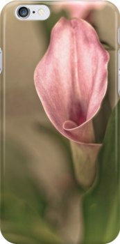 Cala - I Phone Case by Annie Lemay  Photography