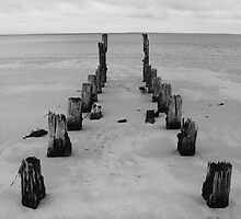 Old Jetty by Andrew  Makowiecki