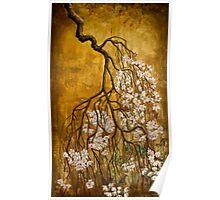 Blooming sakura Poster