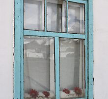 Karakul window - double glazing and red plastic flowers by Marjolein Katsma