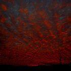 Bloodred Sunrise by Floydwilson
