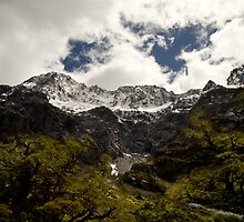 Mountain scene south island New Zealand by Tony Theobald
