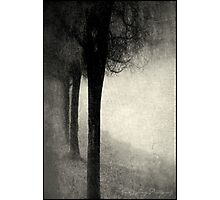 Twins in the Forest Photographic Print