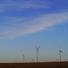 Wind farm  by manda76