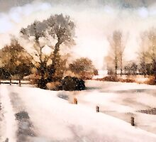 Langley Dyke' in Winter'... by Valerie Anne Kelly