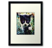 Mordecai Framed Print