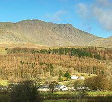 The Fells Above Torver by Jamie  Green