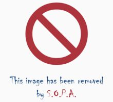 Image has been removed by SOPA by grigolp