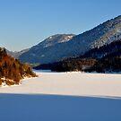 Germany, Frozen Lake 2 by Daidalos