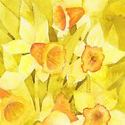 Dot`s Daffs by Val Spayne