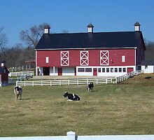 Farm In Boonesboro by James Brotherton