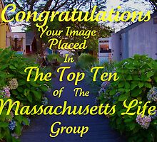 Banner for Top Ten in the Massachusetts Life Group by jeanlphotos