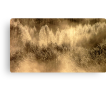 7.3.2012: From the Bank of Cold River VII Canvas Print