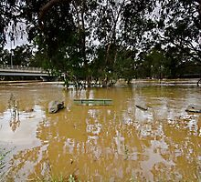 Murrumbidgee Floods - Front Row Seat Day 3 by bazcelt