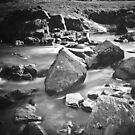 If it weren't for the rocks in its bed, the stream would have no song.  by Paul Richards