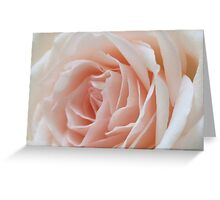 Pastel Pink Rose Greeting Card