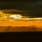 Zululand Landscape Sunset with Electricity Lines by Deborah V Townsend
