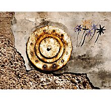 THE WALL FLOWER Photographic Print