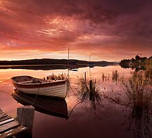 Row Boat, South Franklin, Tasmania #2 by Chris Cobern