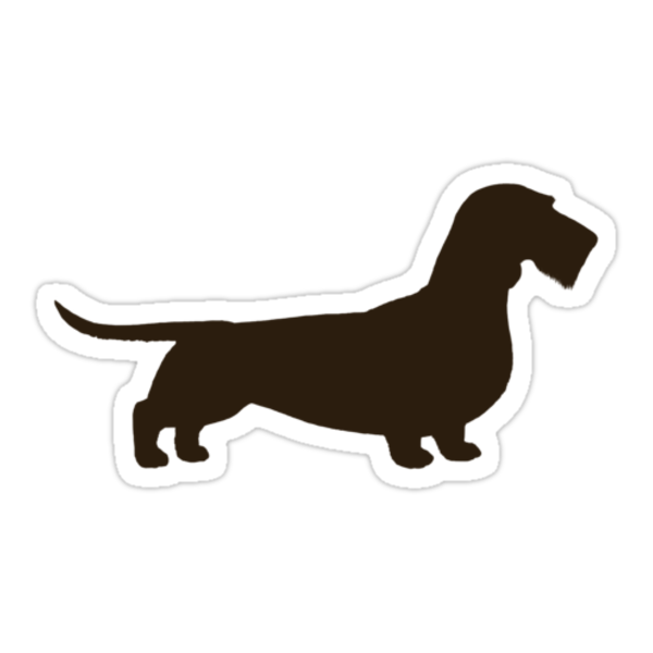 Wire Haired Dachshund Silhouette by Jenn Inashvili