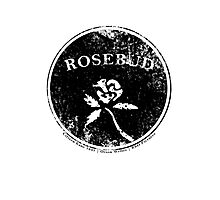 Rosebud Photographic Print