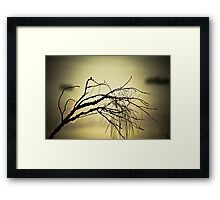Tree Landscape Framed Print