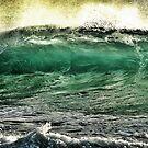 the green barrel by Angelika Sielken