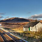 The View From Rannoch Station by Lynne Morris