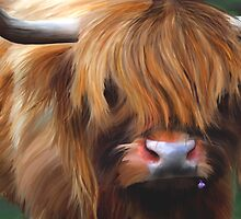 Highland Cow by Michelle Wrighton