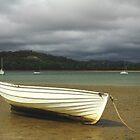 Squeaking Point , nor west Tasmania , Australia by phillip wise
