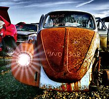 4No 308 ~ 69 VW by Charles & Patricia   Harkins ~ Picture Oregon