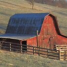 Tucked Away Barn gets first light by David  Hughes