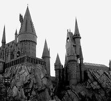 Hogwarts Castle by dgscotland