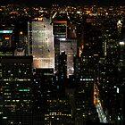 Manhattan at Night by brianhardy247