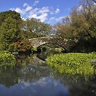 Central Park Bridge by brianhardy247
