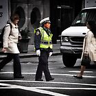 Police Calm by brianhardy247
