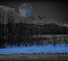Once in a Blue Moon by Sheryl Gerhard