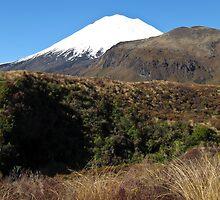 Mount Ngauruhoe 2 by Anne Scantlebury