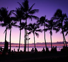 Underneath the Palm Trees | Waikiki Beach 2012 by RedDash