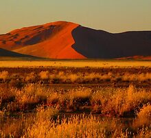 red dunes at sunrise by supergold