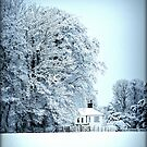 llynon house in snow by tina williams