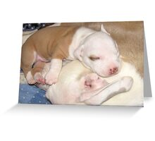 Mom's My Favorite Pillow Greeting Card