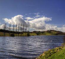 Piperdam Loch by Tom Gomez