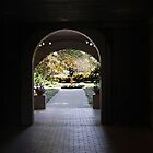 Sunlight Through The Garden Arches by Kathy Baccari