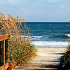 Beach Entrance by Kathy Baccari