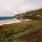 California coast  by s2kologist