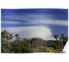 Clouds at Joshua Tree Poster