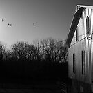 Farm Scene by Christopher Herrfurth